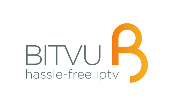 Bitvu Branding - brand identity and supporting statement