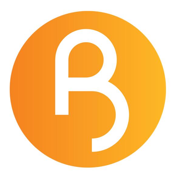 Bitvu Branding - logo design